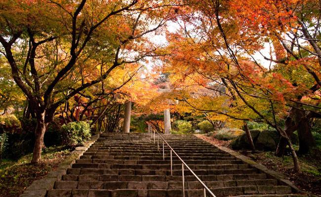 竃門神社(かまど)